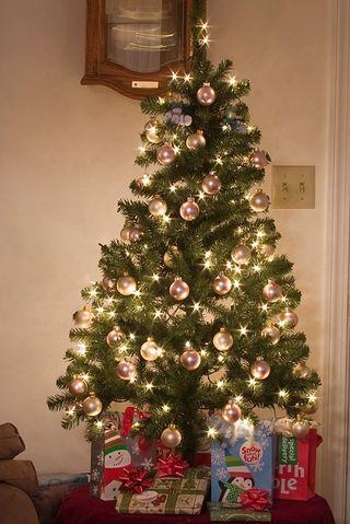 Christmas tree 2010_800jpg