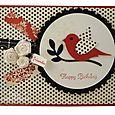 Happy Birthday wishes red  bird_800
