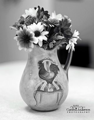 Rooster pictcher in BW-800