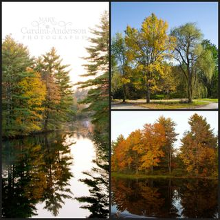 Soucook River Collage