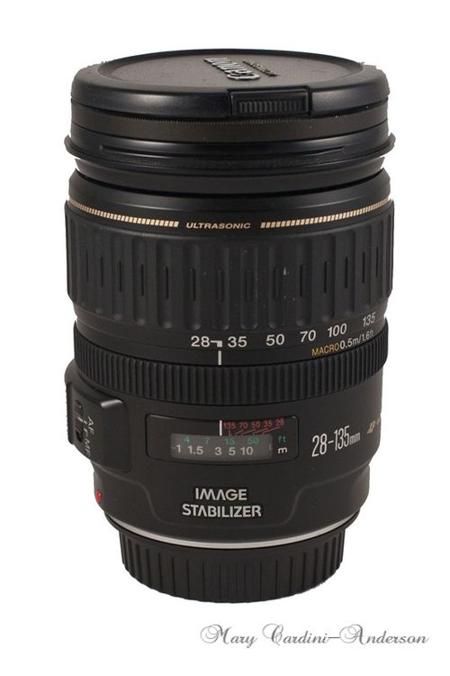 28-135 lens -800 (2)